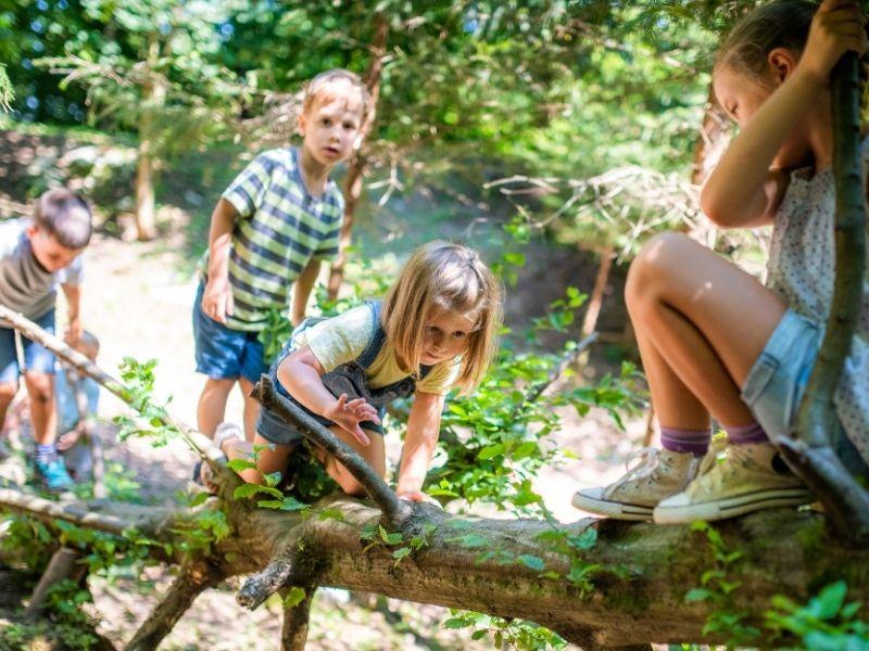 Pédagogie assistée par la nature à l'école des chevauchées